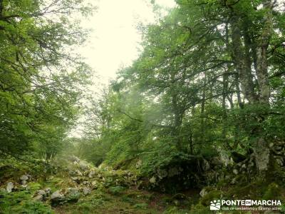 Descenso Sella;Lagos Covadonga-Picos Europa; rutas por los arribes del duero;agencia de viajes avent